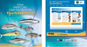 The Cover of the Fish, Mercury, and Nutrition brochure